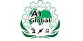 A1 Global Institute of Engineering and Technology