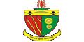 Birsa Institute of Technology